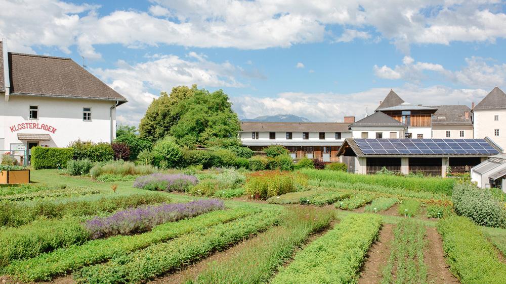 klostergarten-wernberg-1000-563